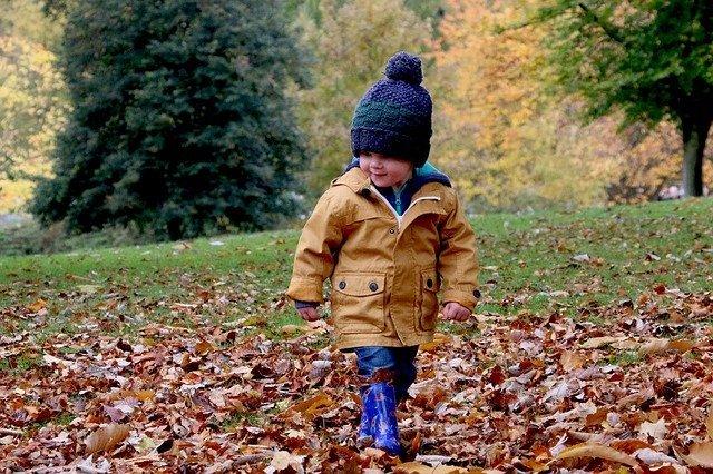 """#Freizeit: Noch Plätze für Kurzentschlossene: """"Herbstzeit – mit allen Sinnen erleben"""""""
